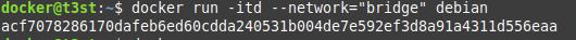 """docker run -itd –network=""""bridge"""" debian"""