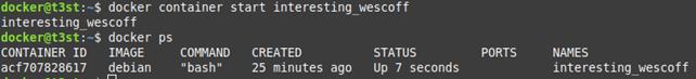 docker container start interesting_wescoff
