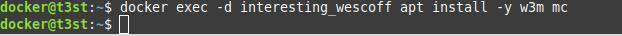 docker exec -d interesting_wescoff apt install -y w3m mc